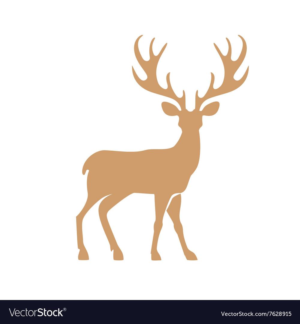 Deer with antlers vector image