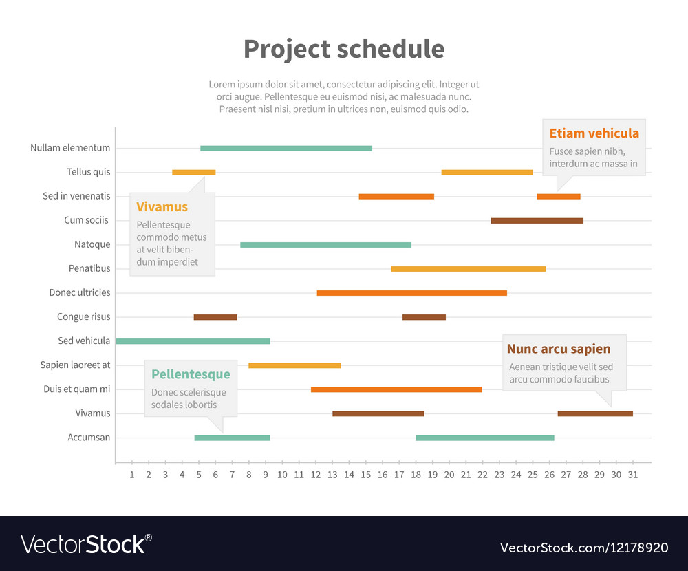 project plan schedule chart with timeline gantt vector image
