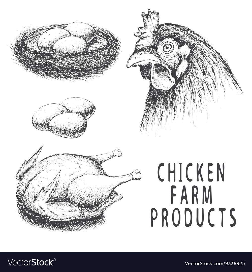Set of monochrome chicken farm products