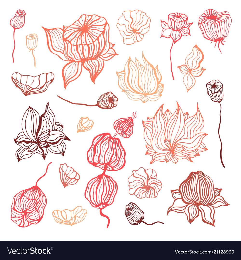 Abstract flower hand drawn