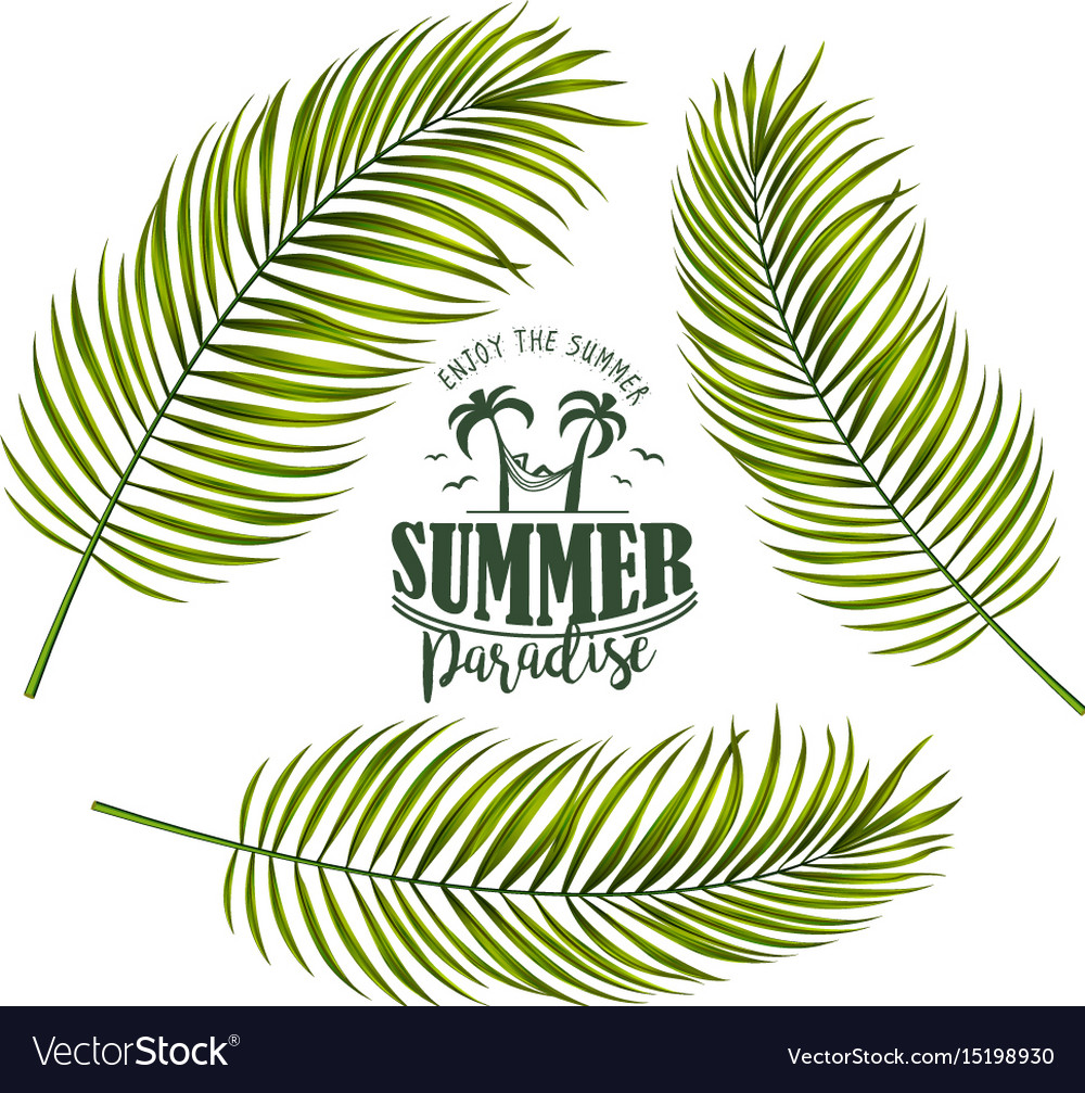 Banner with palm leaves