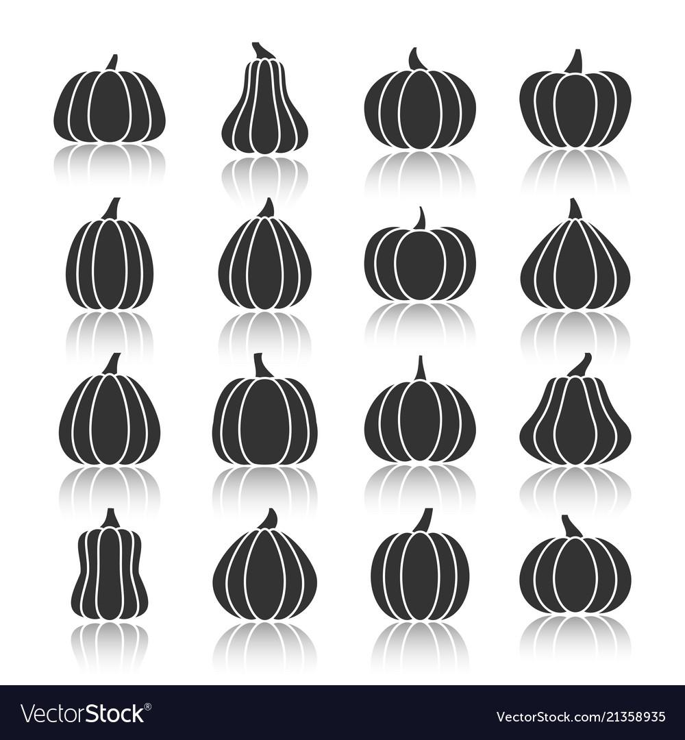 Halloween black pumpkin with reflection icon set