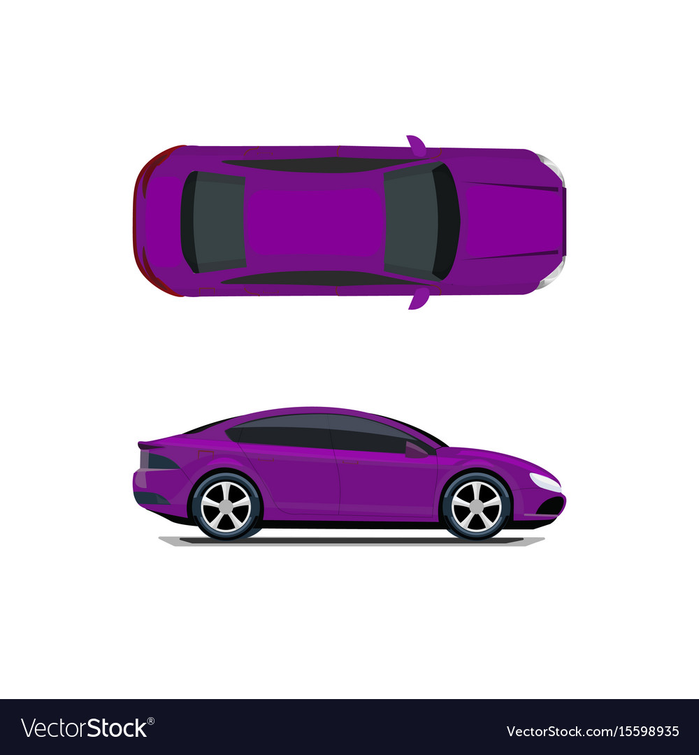 Purple car view from above and from the side vector image