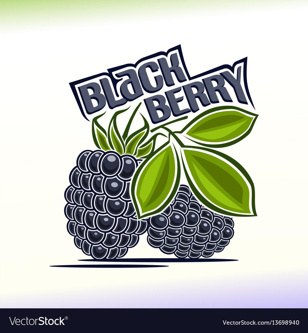 Blackberry still life
