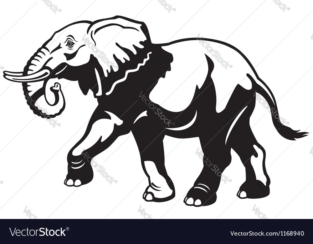 Elephant Black And White Drawing