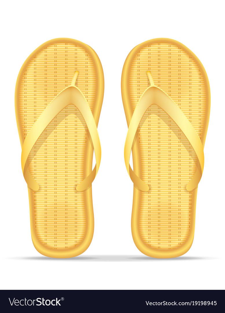 Beach slippers stock vector image