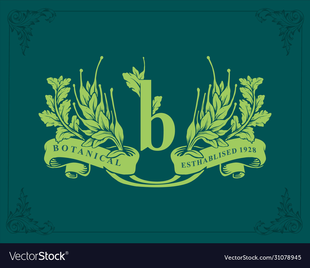 Logo letter b vintage banner botanical ribbon