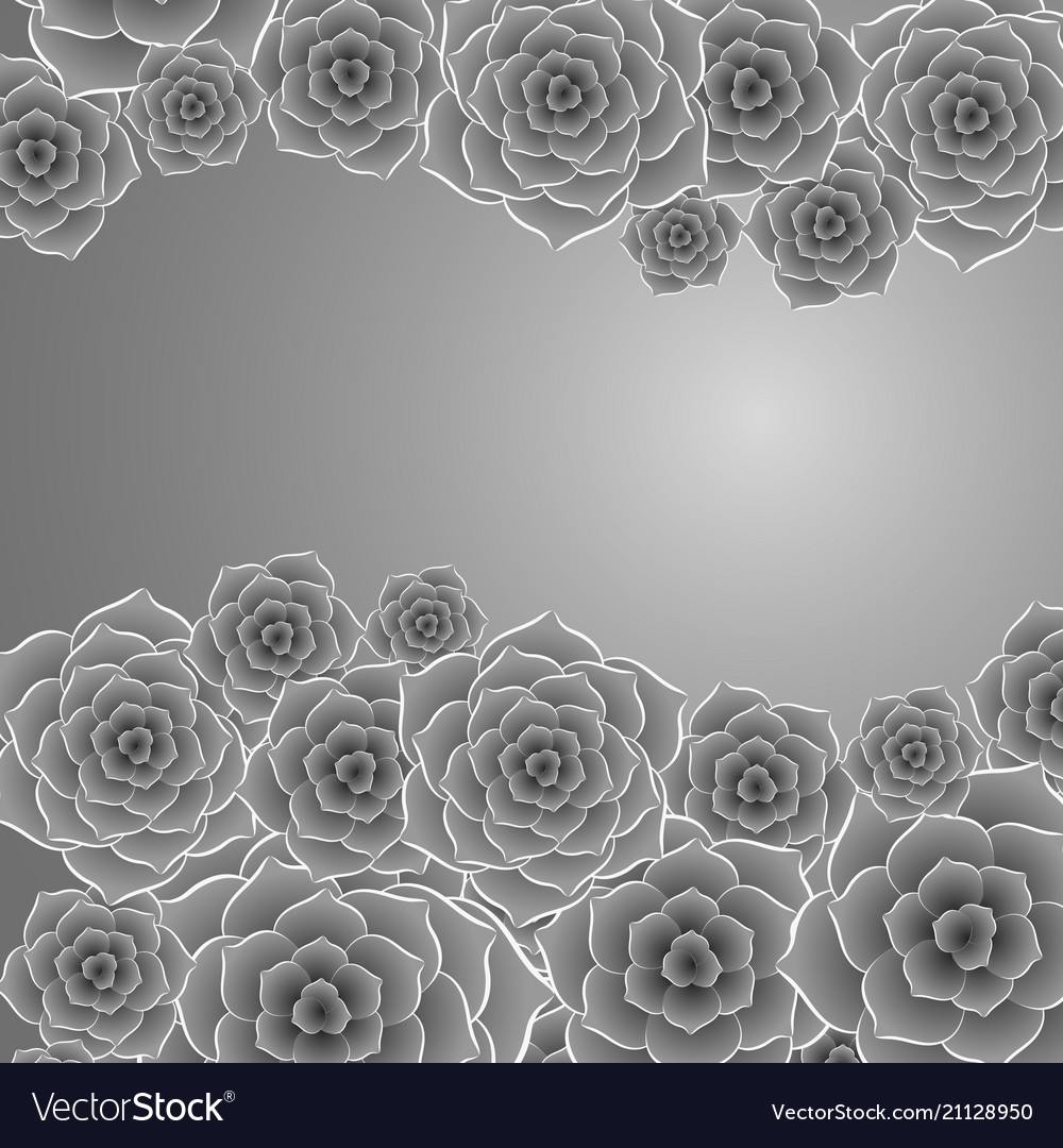 Beautiful black and white rose flower background