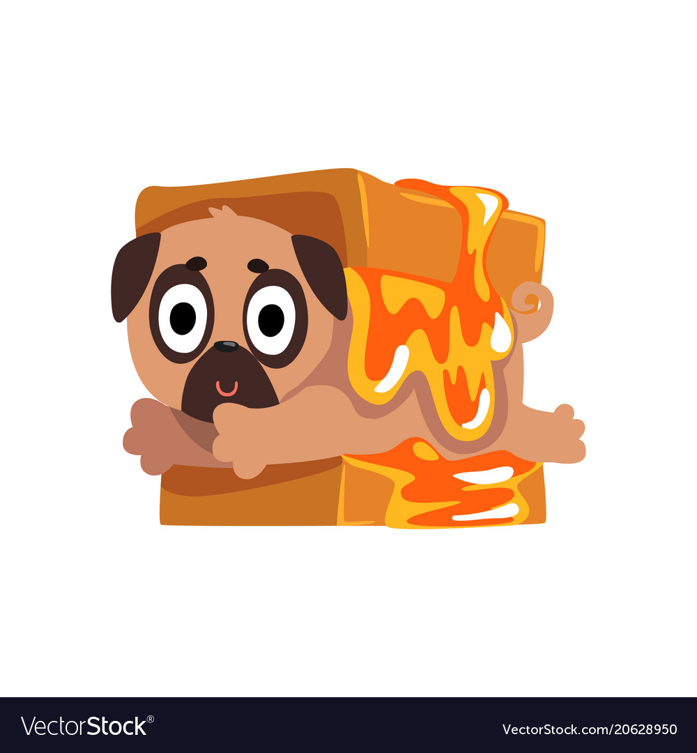 Cute funny pug dog character inside sandwich with vector image
