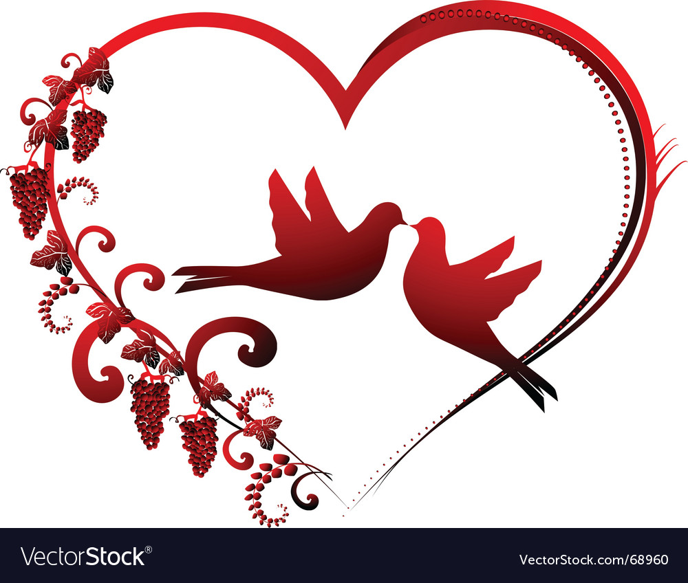 Heart and dove vector image