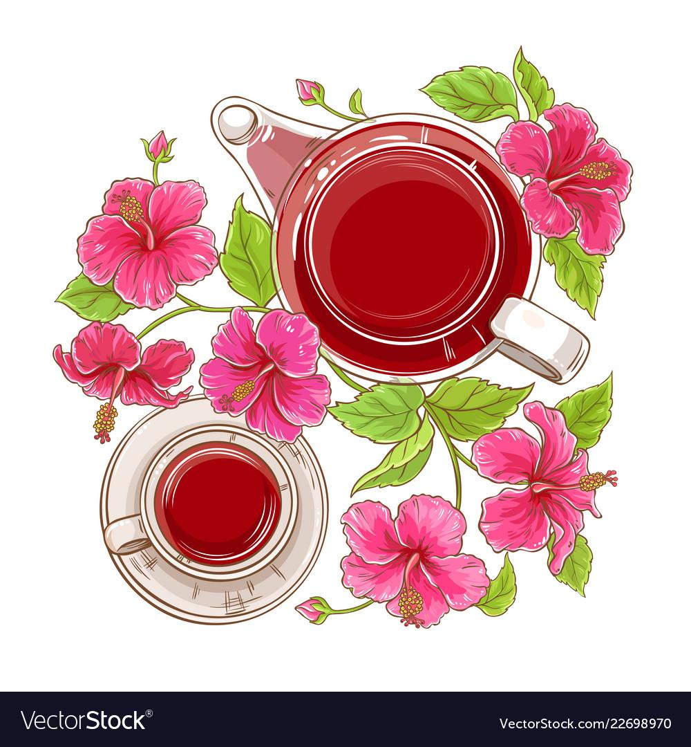 Hibiscus Tea Teapot Vector Images 39