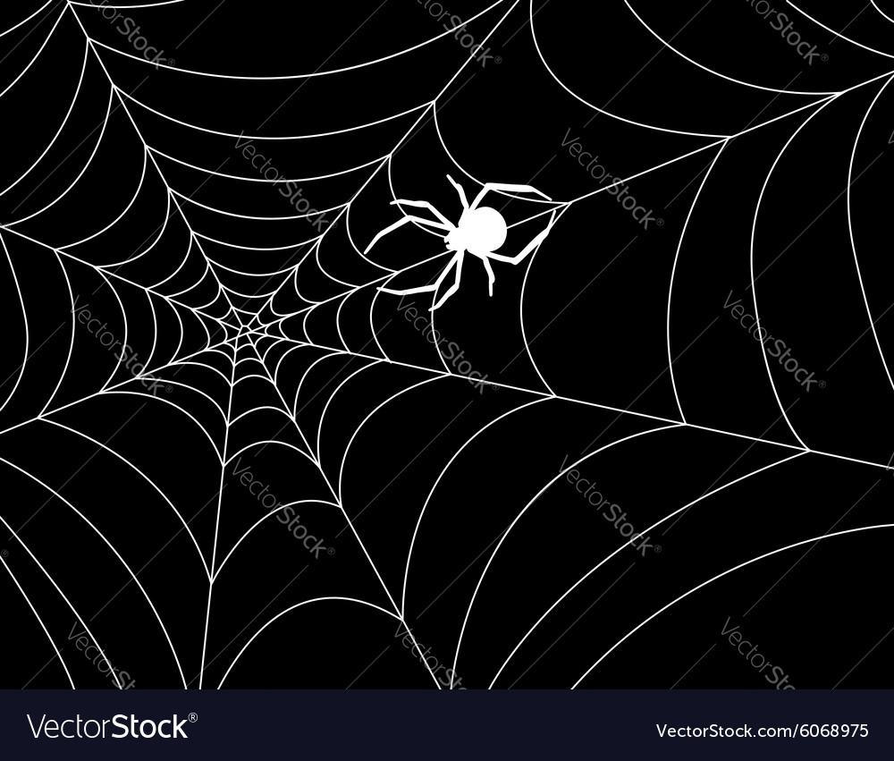 Cobweb with a spider in the center against night
