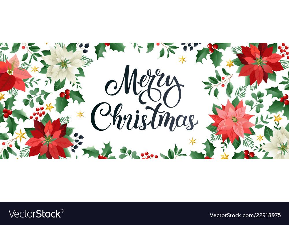 Merry christmas design composition of poinsettia