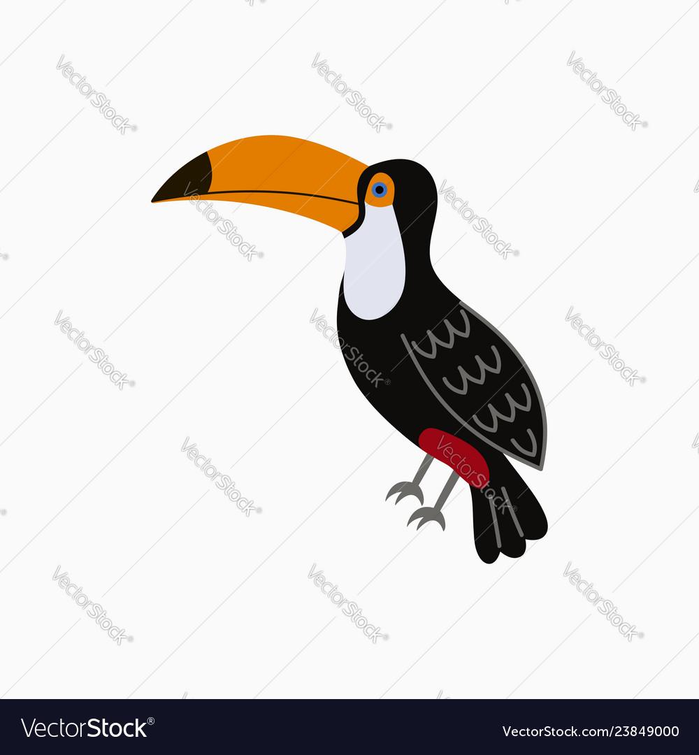 Toucan exotic tropical bird with big yellow beak