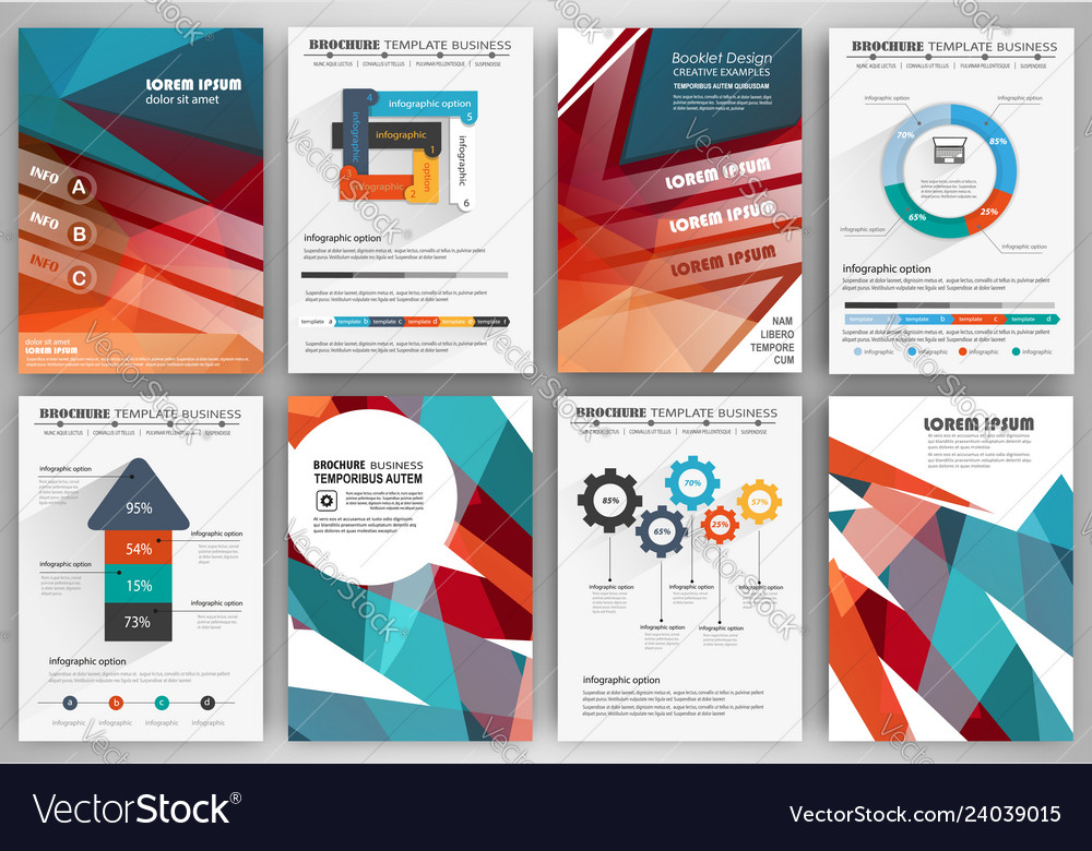 Set Brochure Design Templates And Infographics Vector Image