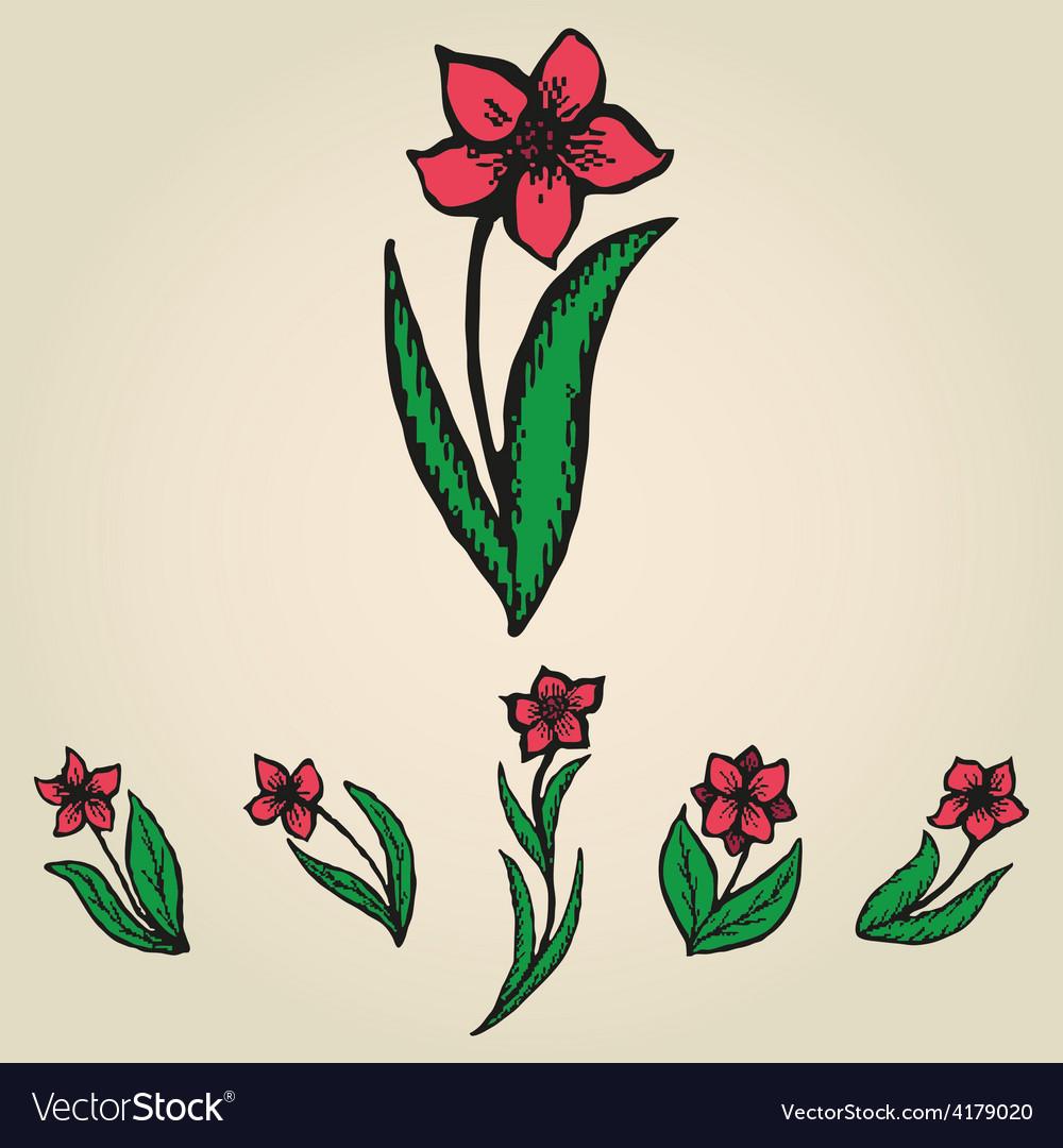 Floral doodling flowers like narcissus set