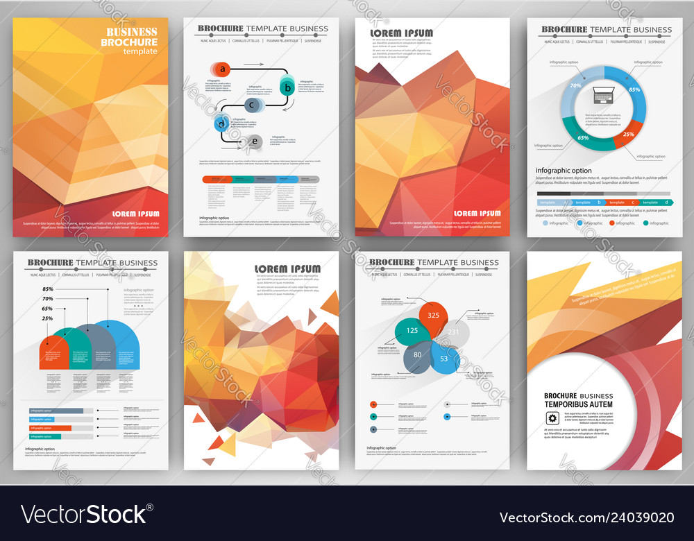 Set of business flyer design infographic layout