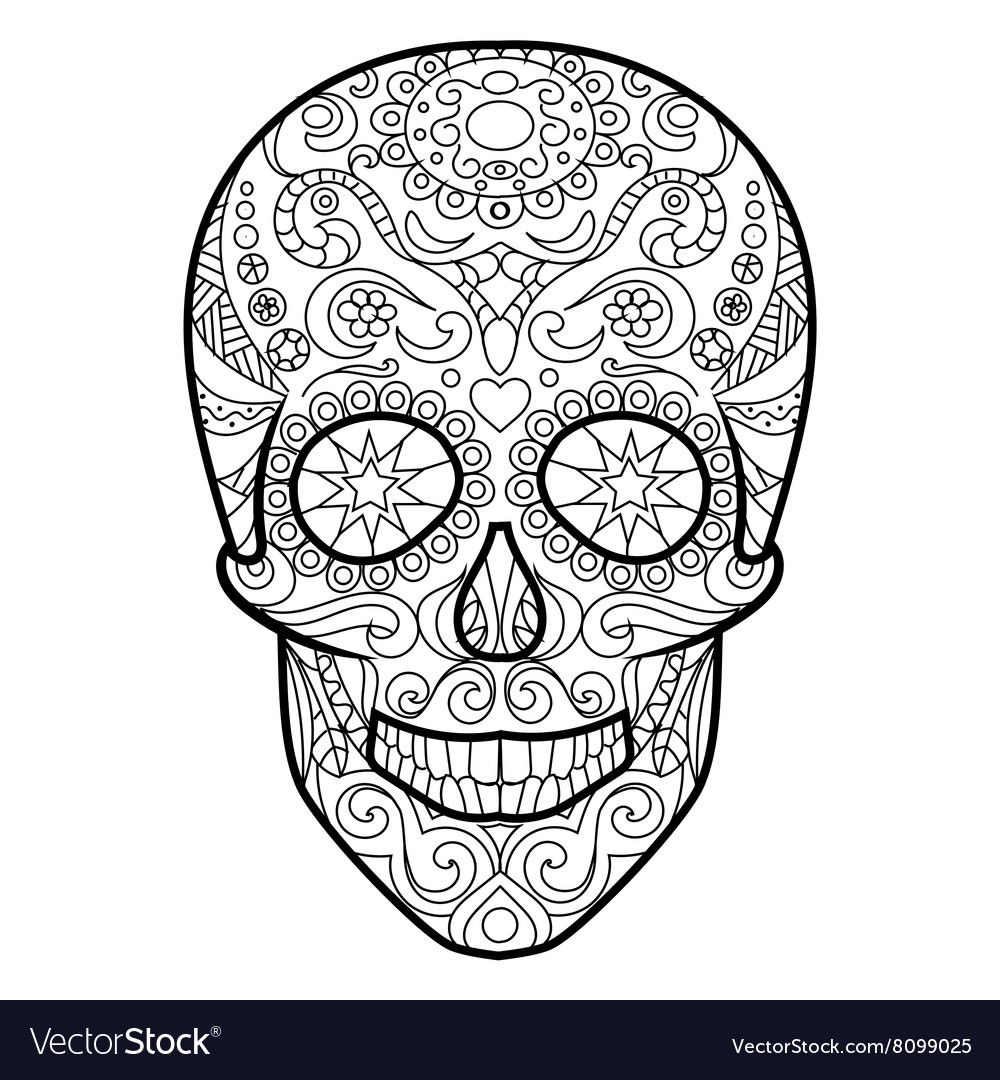 Skull Coloring Book For Adults Royalty Free Vector Image