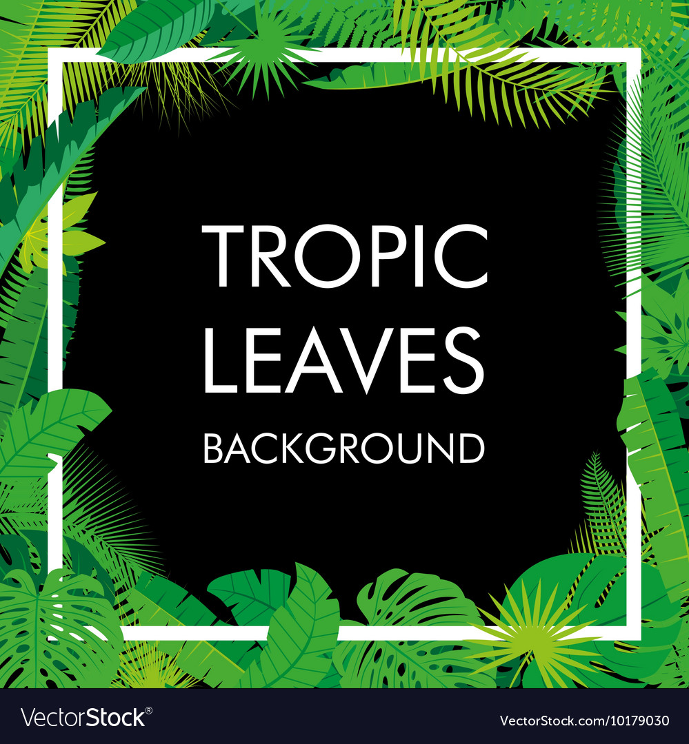 Tropical Leaves background isolate
