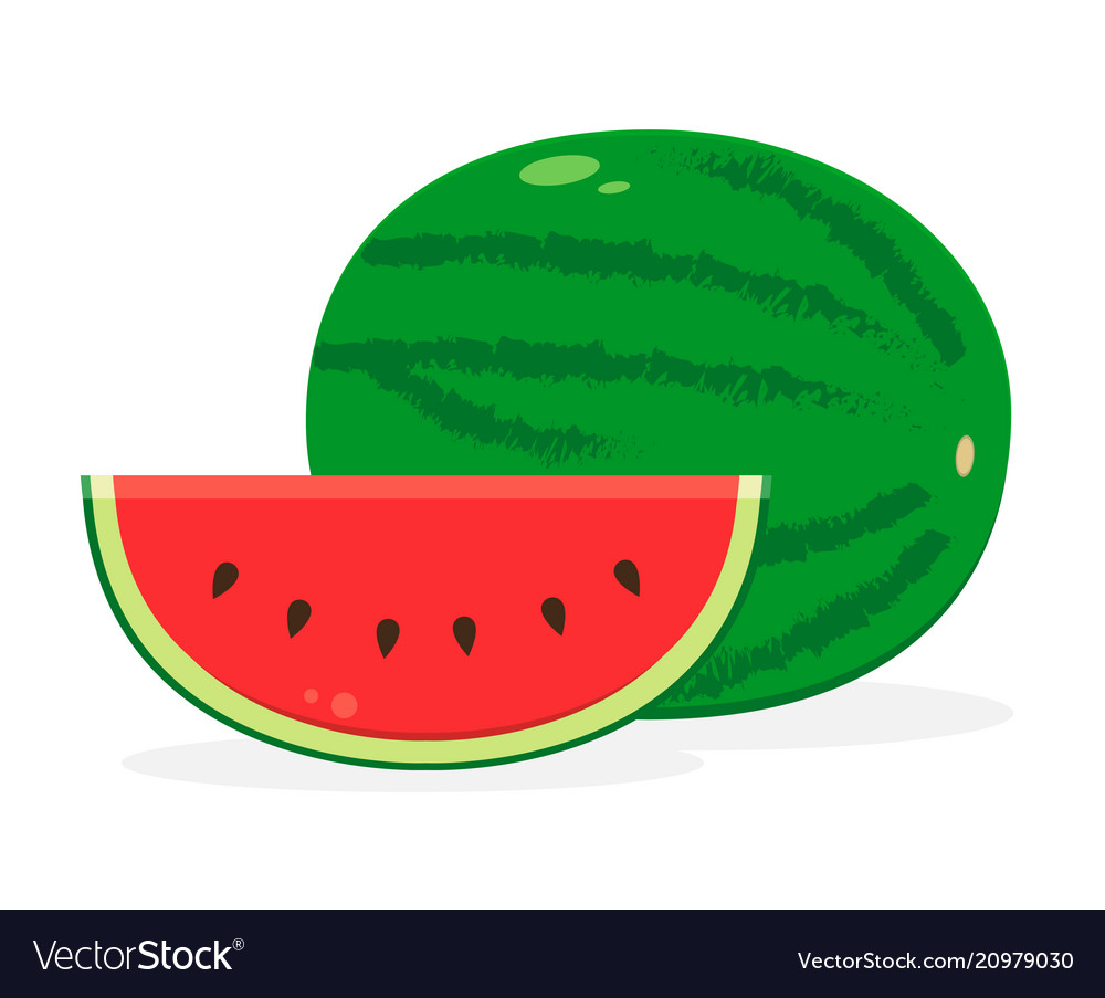Watermelon fruit icon isolated fruits and