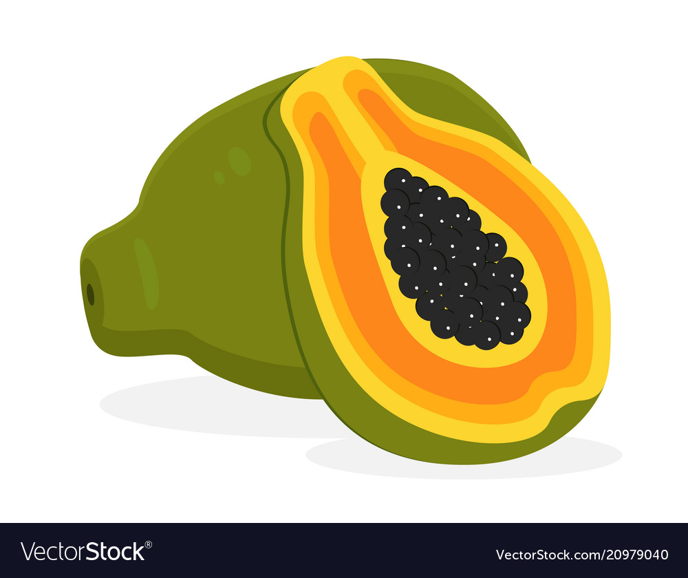 Papaya fruit icon isolated fruits and vegetables