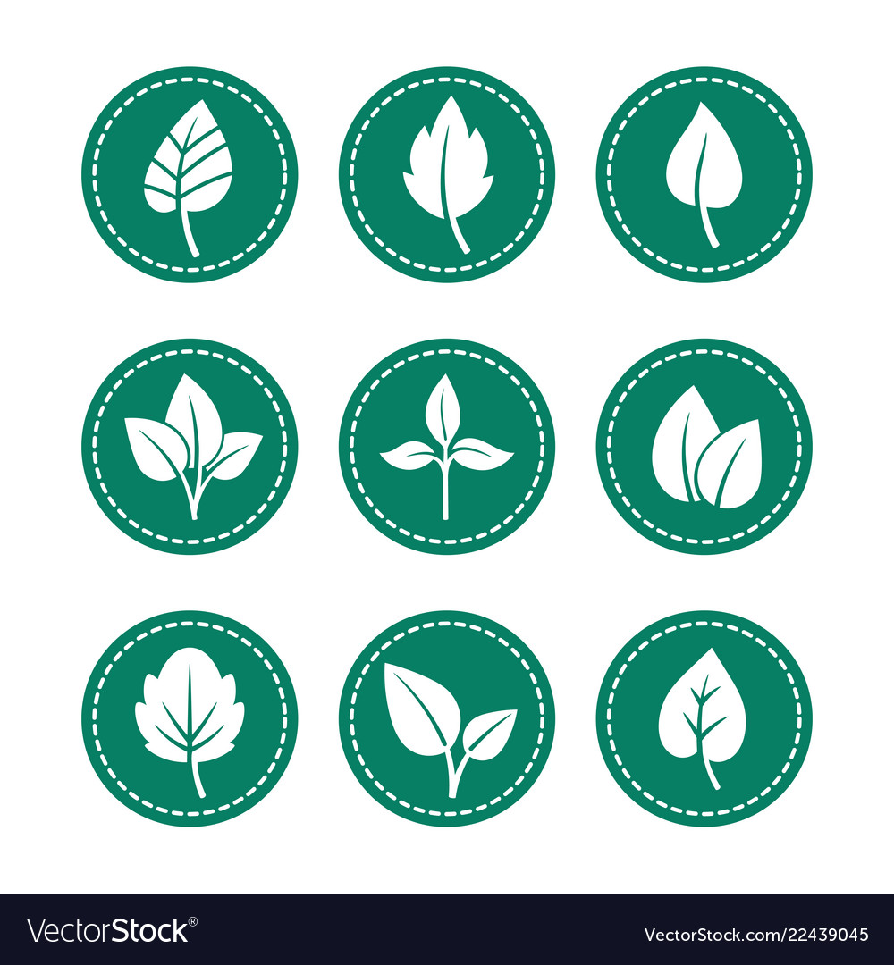 Green leaf round icons set
