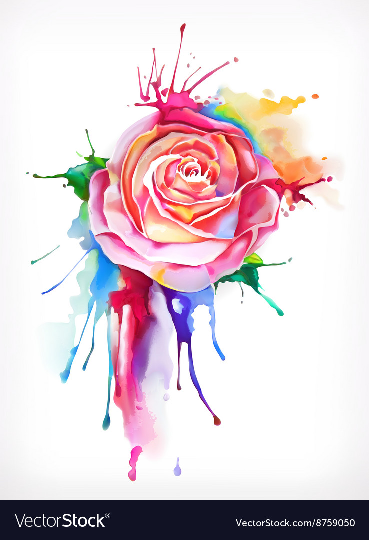 Watercolor painting rose flower