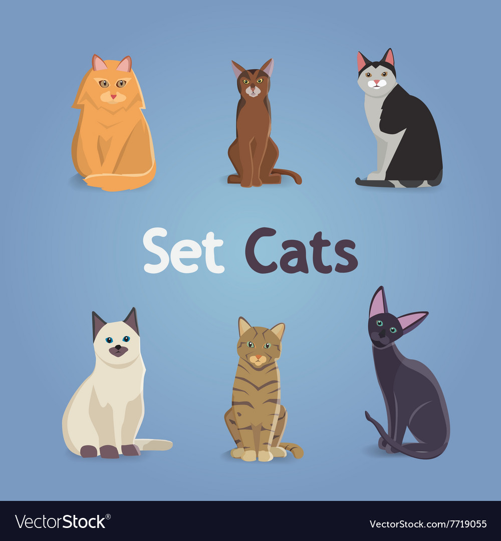 Collection of Cats and Dogs of Different Breeds