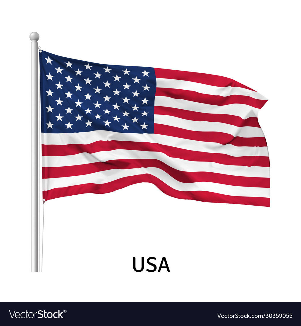 Flag united states america vector