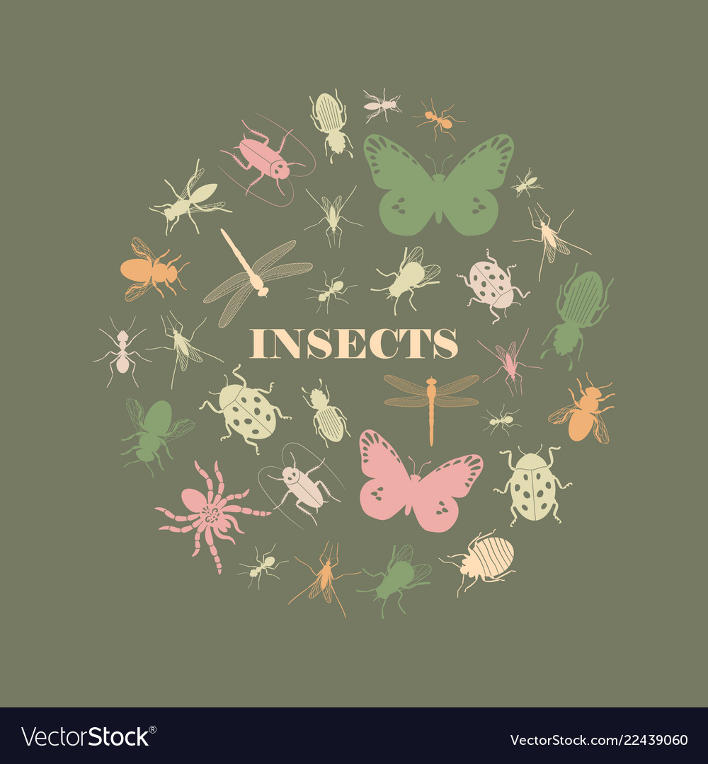 Vintage insect icons round shape