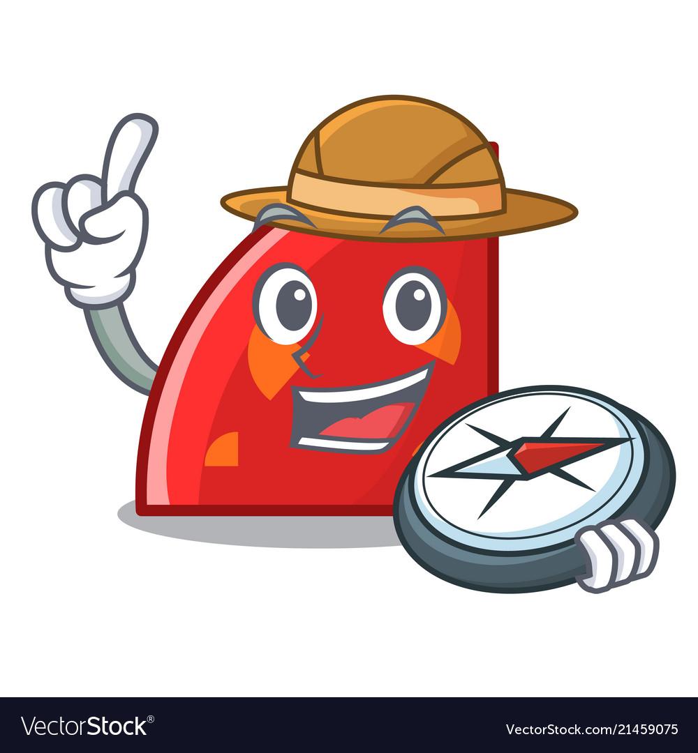 Explorer quadrant mascot cartoon style