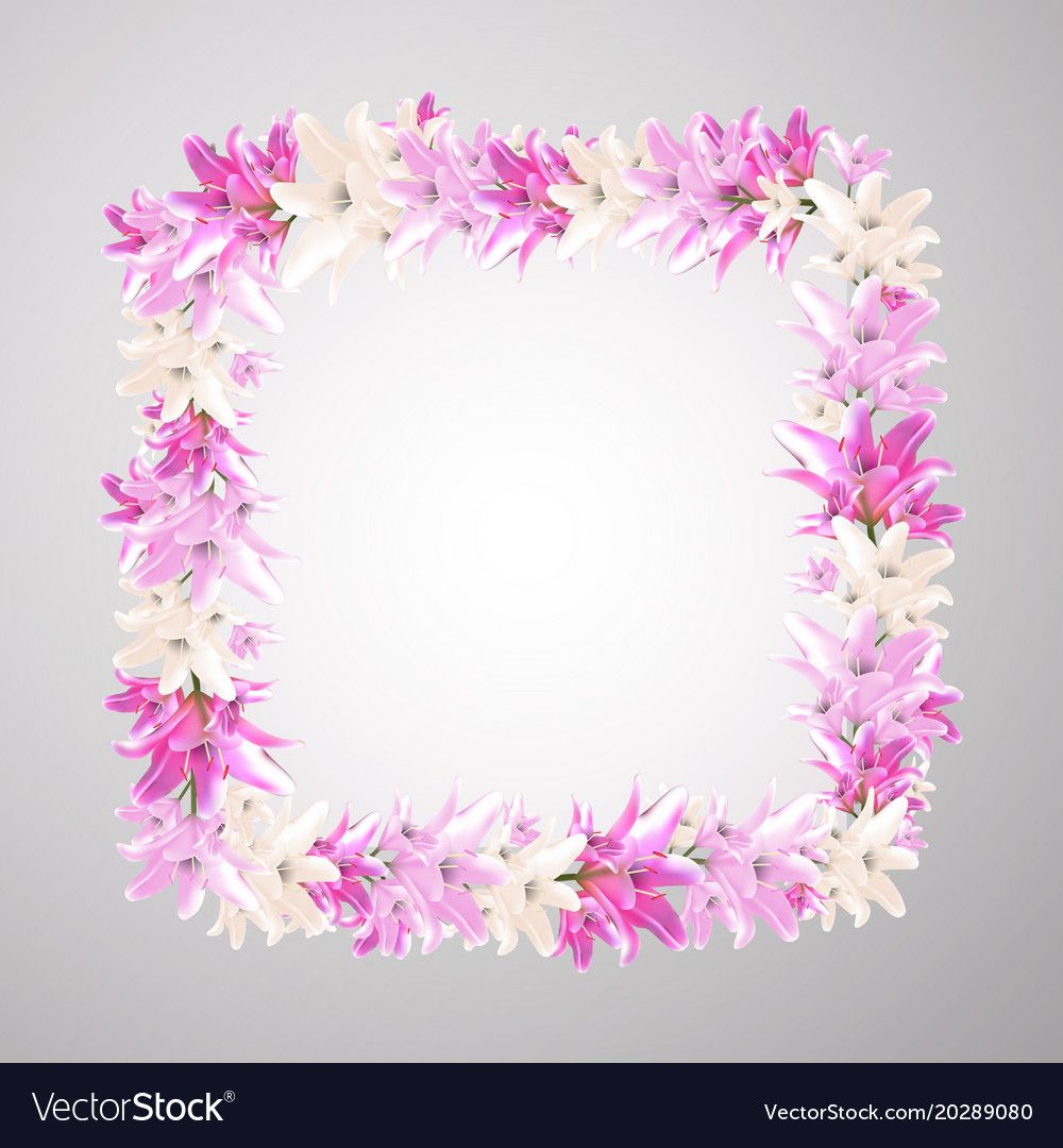 Square frame with pink flowers of lily romantic vector image izmirmasajfo