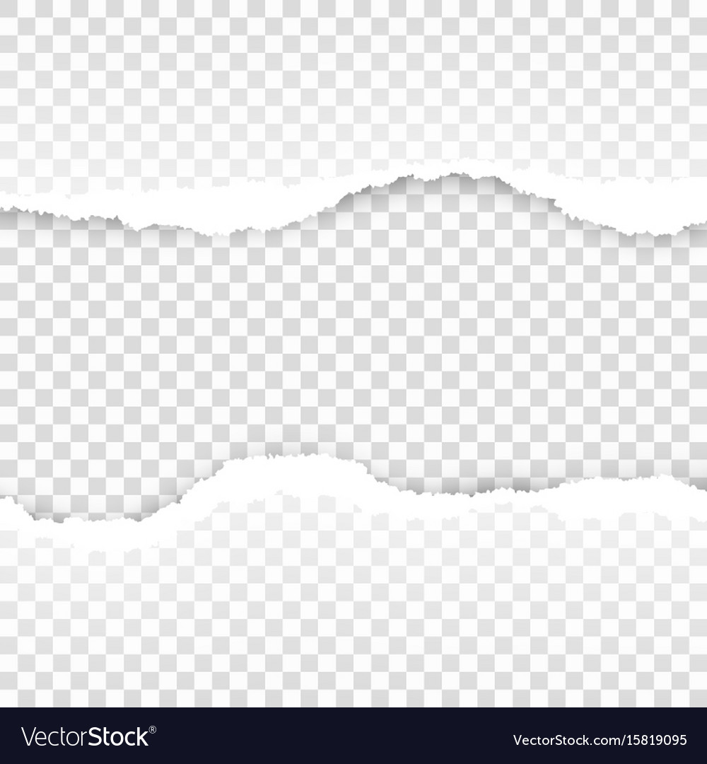 Ripped paper transparent template eps 10 vector image