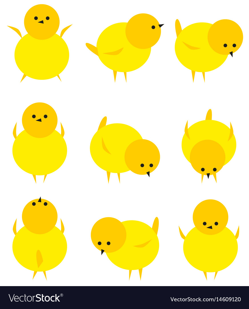 Baby yellow chicken isolated on white icon set