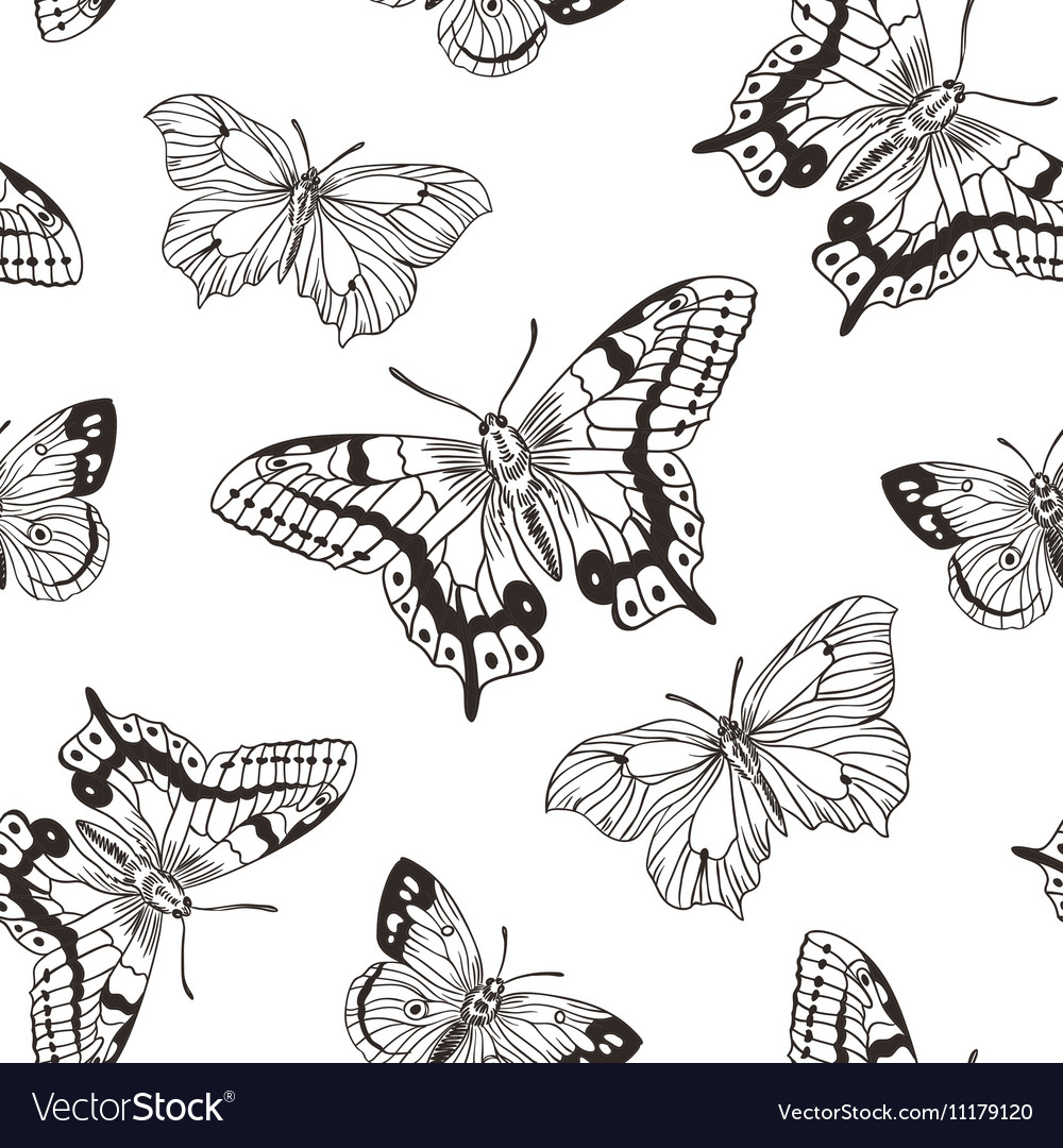 Beautiful seamless background of butterflies black