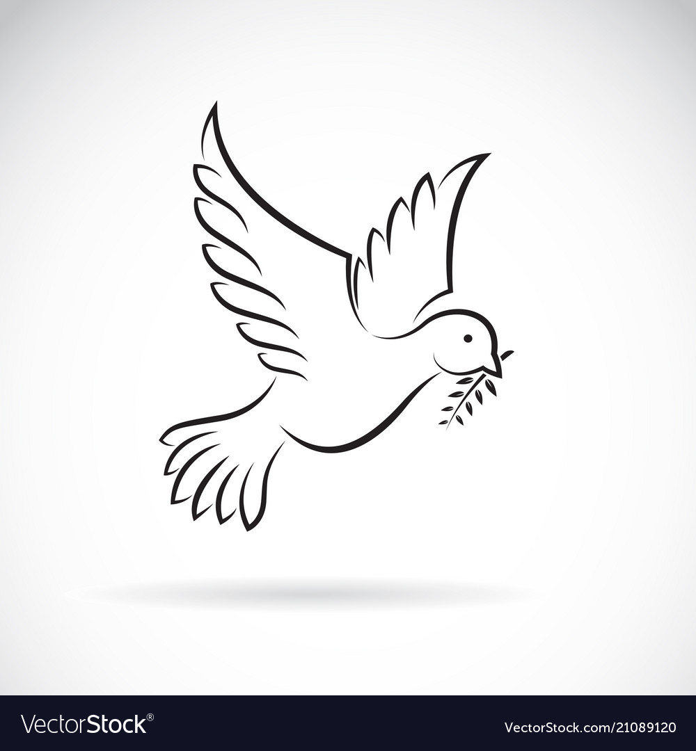 Black dove of peace with olive branch on white