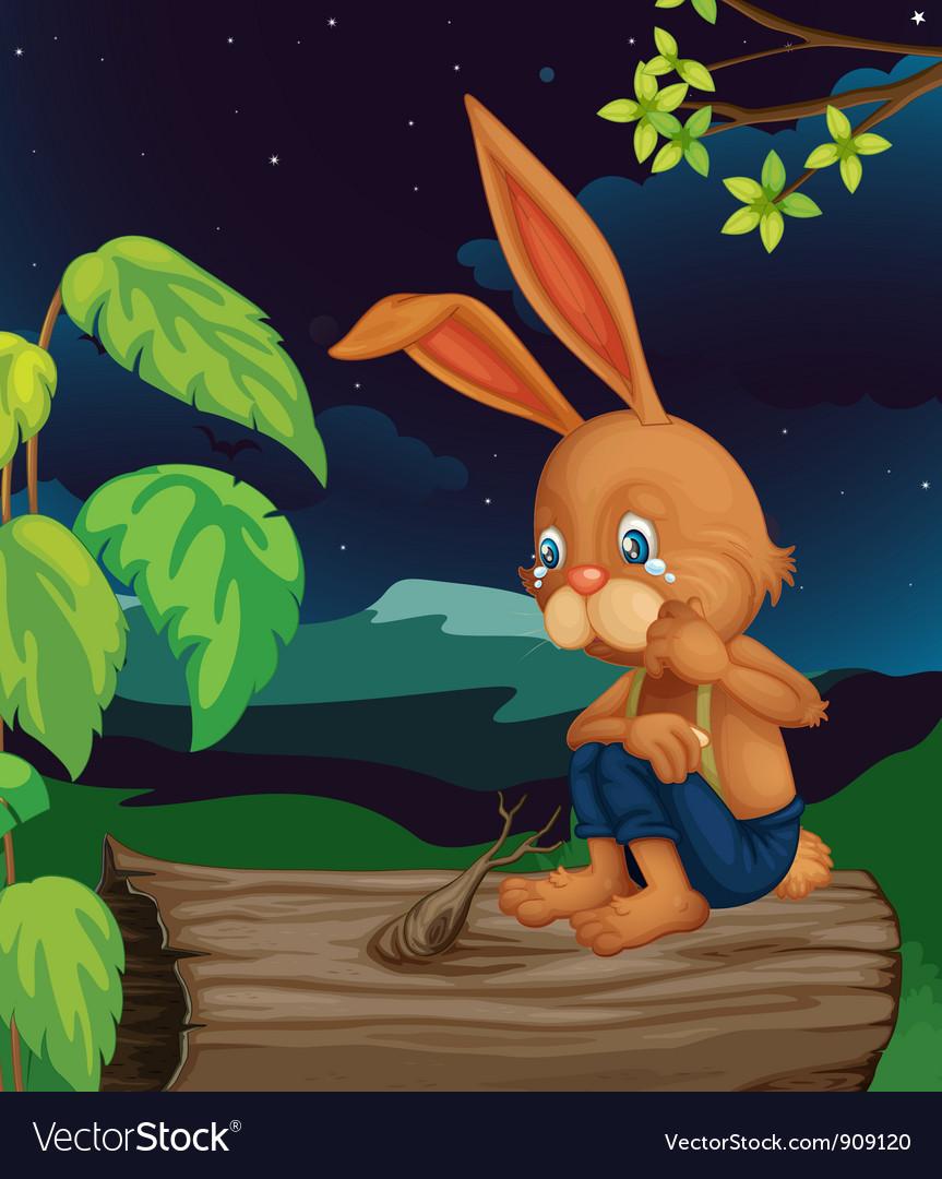 Crying rabbit vector image