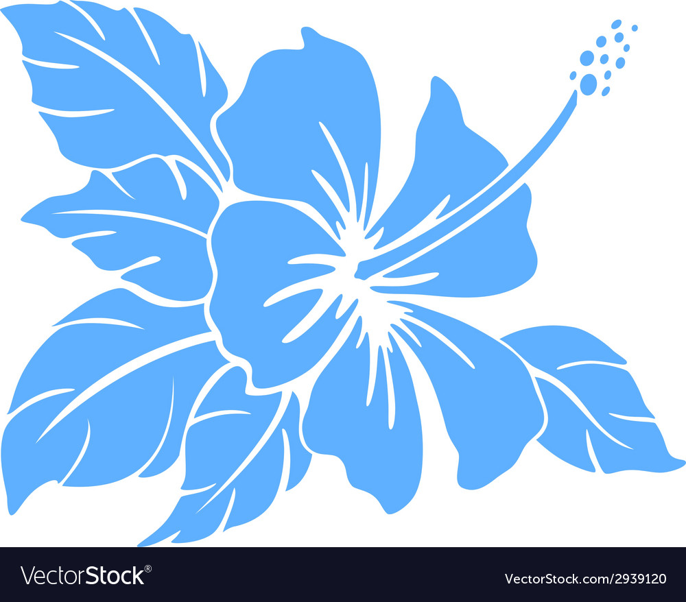 Hibiscus flower Silhouette vector image