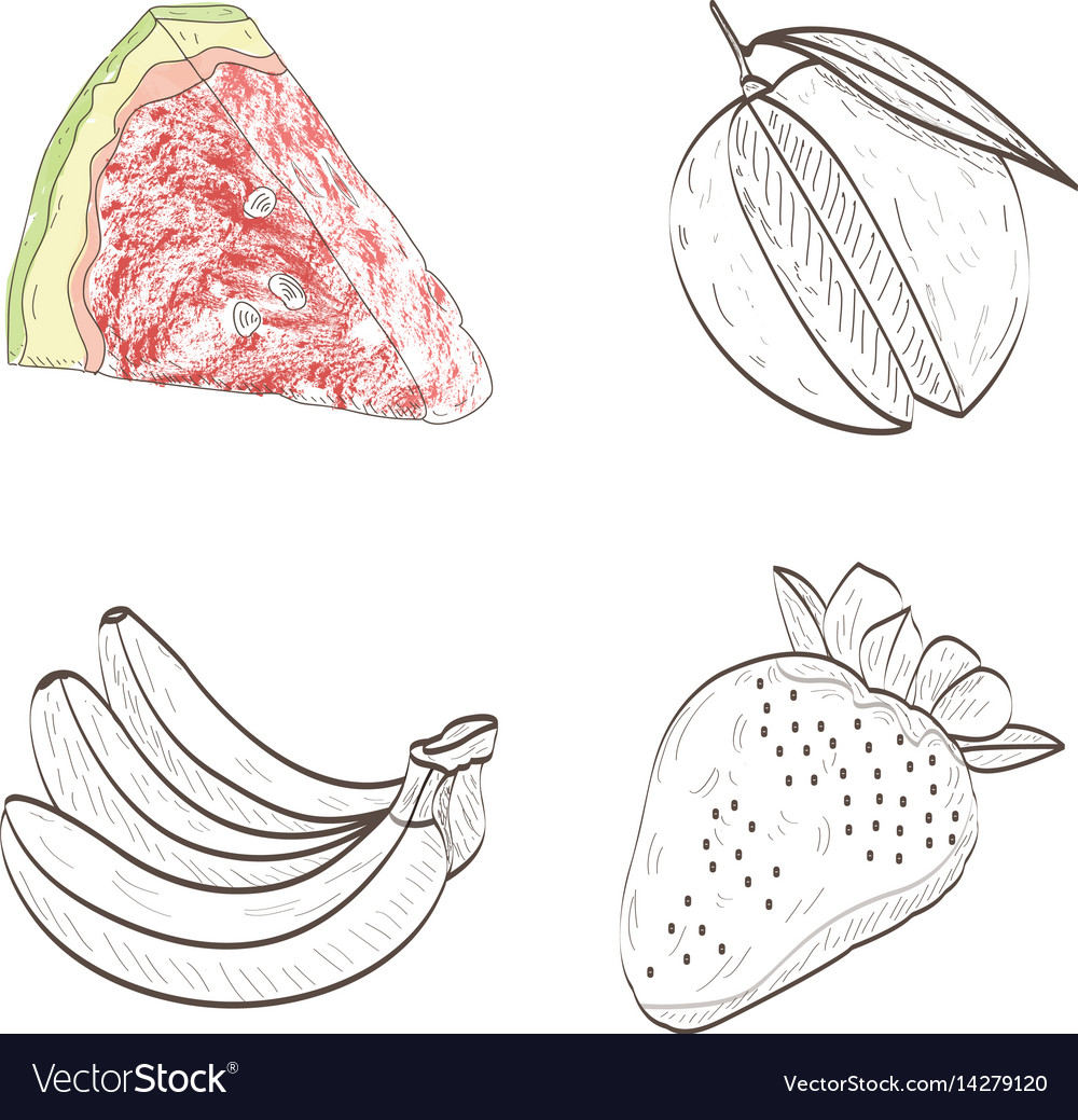 Isolated fruits outlines