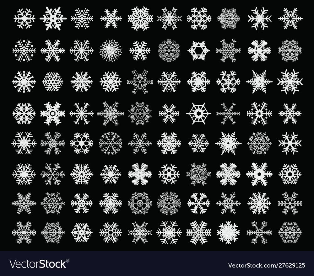 Different white snowflakes