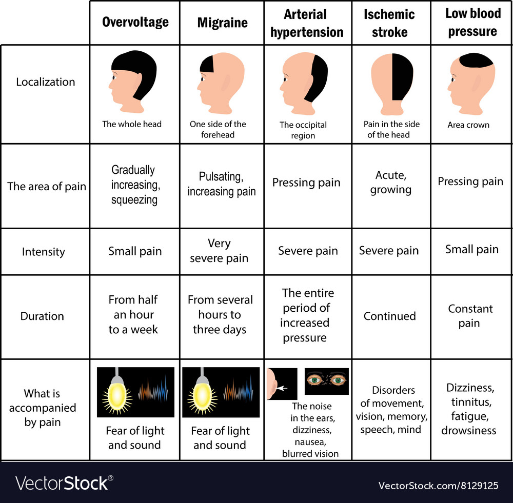 types of headaches driving table infographics vector image. Black Bedroom Furniture Sets. Home Design Ideas