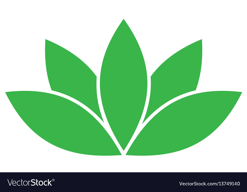 Green lotus symbol spa and wellness theme design vector image