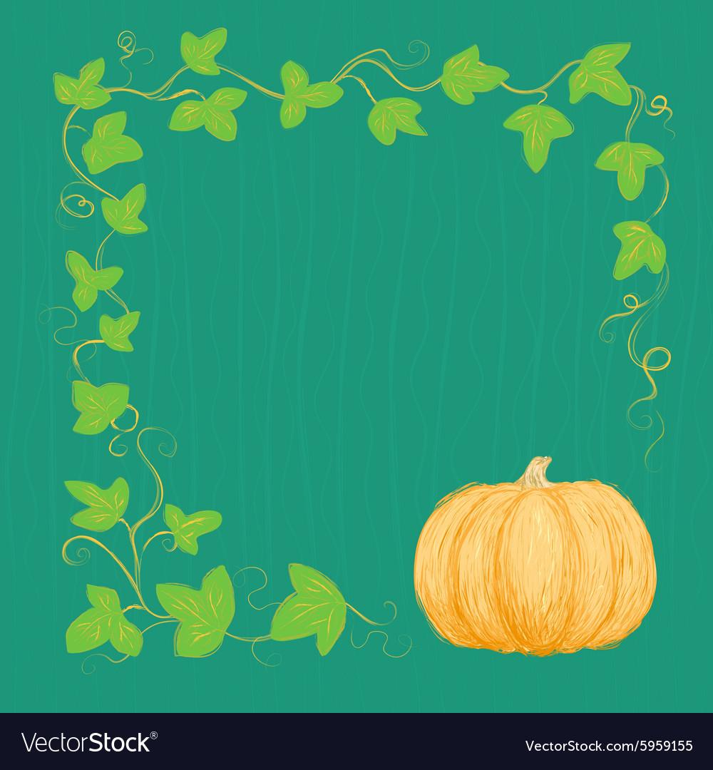 Hand drawn pumpkin and vine vector image