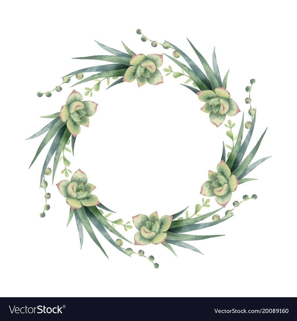 Watercolor Wreath Cacti And Succulent Royalty Free Vector
