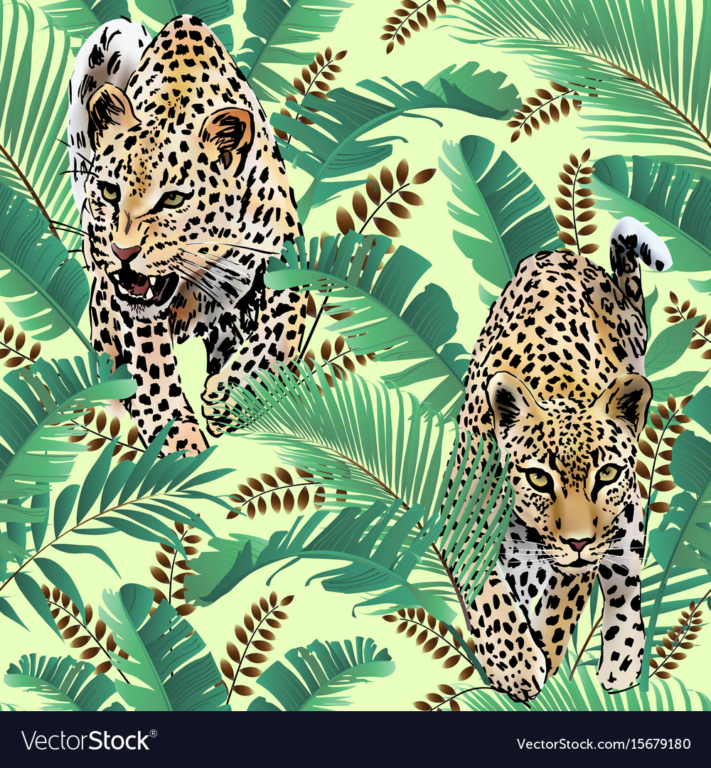 Cheetah and leopards palm leaves tropic vector image