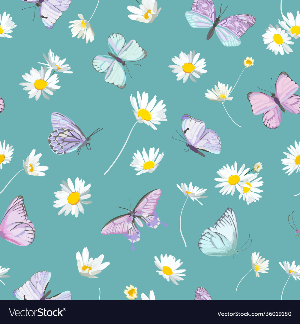 Spring daisy flowers and butterfly