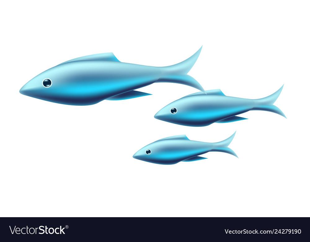 Blue tropical fish coral reef fish