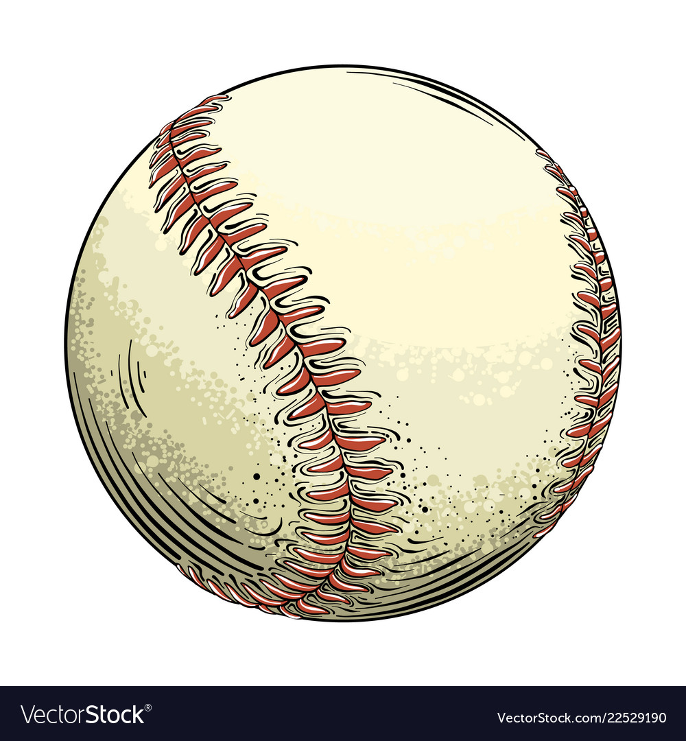 Hand drawn sketch baseball ball in color isolated