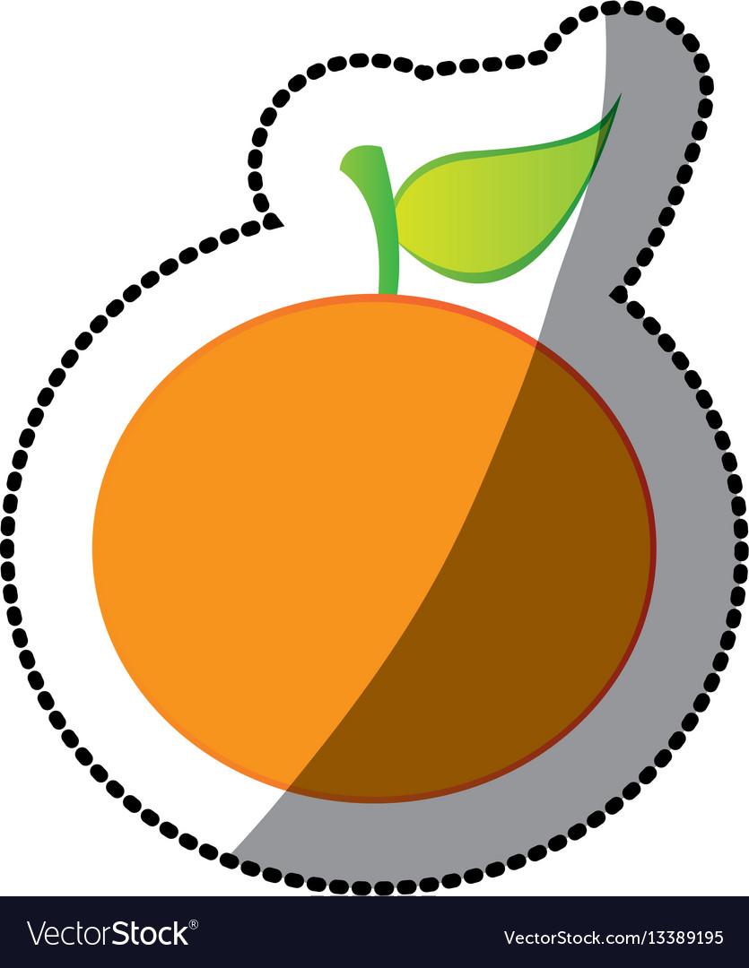 Color orange fruit icon stock