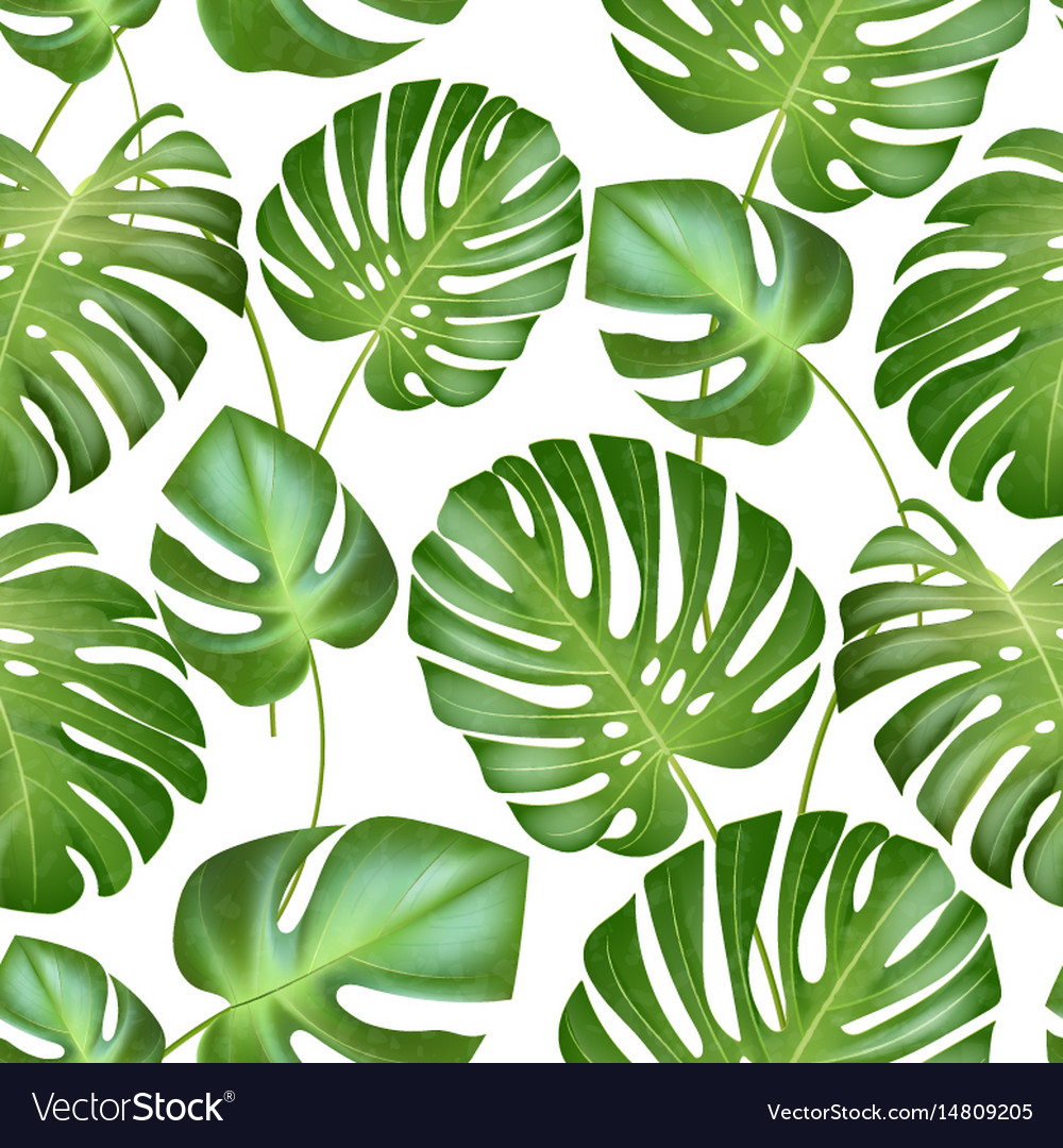 Seamless Tropical Leaves Pattern Strong Royalty Free Vector Choose from over a million free vectors, clipart graphics, vector art images, design templates, and illustrations created by artists worldwide! vectorstock